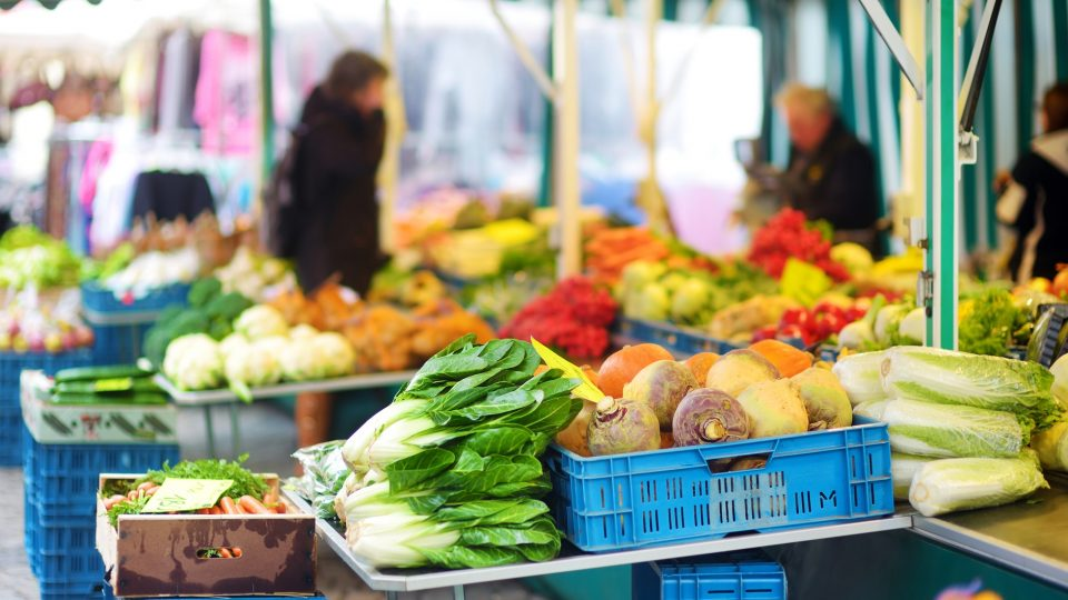 Organic vegetables sold in farmers market